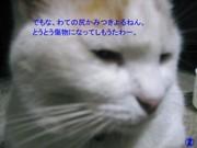 Img_1459
