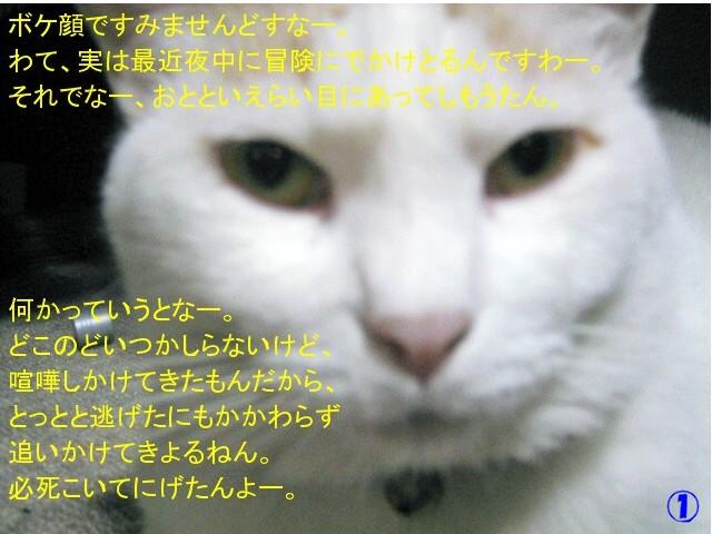 Img_1460_2